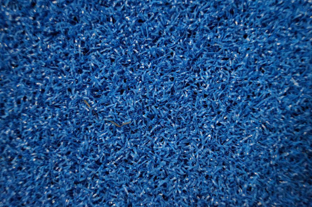 Декоративная трава Прайм синий