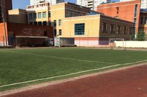 Искусственная трава для футбола 50мм. bicolor Image 2